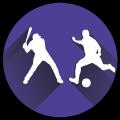cricket-football
